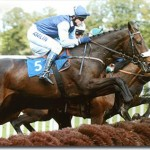 """alt=""""The Grand National Horse Racing"""""""